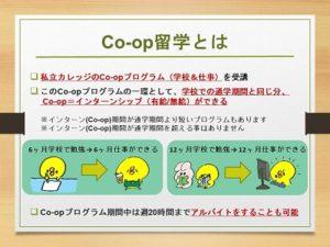 Co-op説明会イメージ