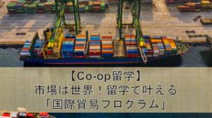 【Co-op留学】市場は世界!留学で叶える「国際貿易プログラム」